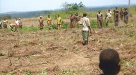 Lavoro nei campi a Kananga