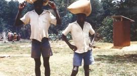 Riso a Tosamaganga - Tanzania